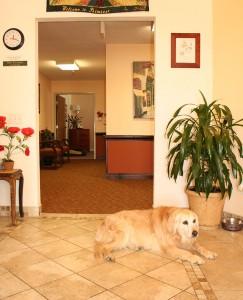 Resident staff member