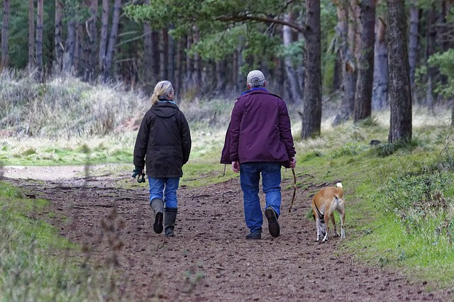 Elderly People Walking With A Dog